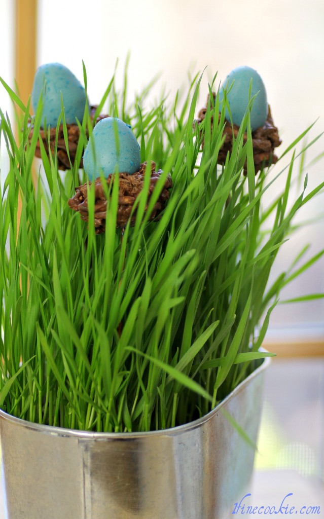 Nesting Egg Cake Pops easter hatching spring baby shower nest cookies chinese noodles wheat grass display decor